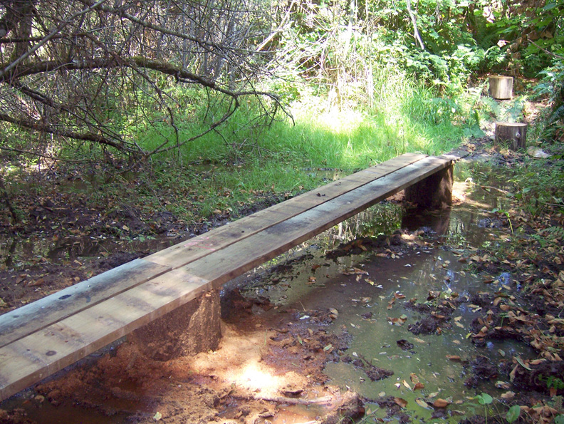Small Portable Bridges : Building a small cable suspension bridge wildcat man