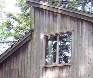 lichen-House