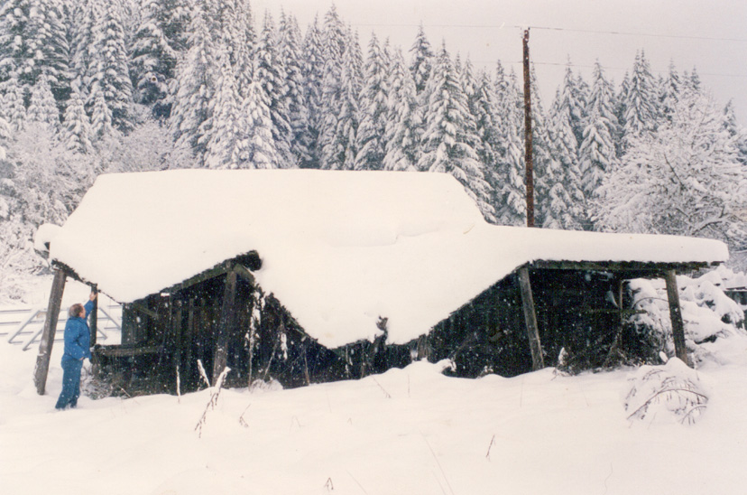 OldBarn-Snow